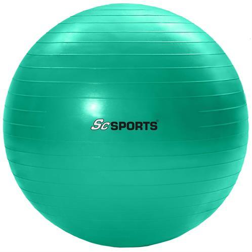 gymnastikball 65 cm sitzball fitnessball yogaball b rostuhl ball inkl pumpe ebay. Black Bedroom Furniture Sets. Home Design Ideas