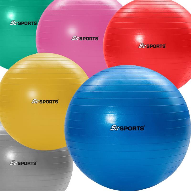Gymnastikball inkl. Pumpe 65 cm in verschiedenen Farben