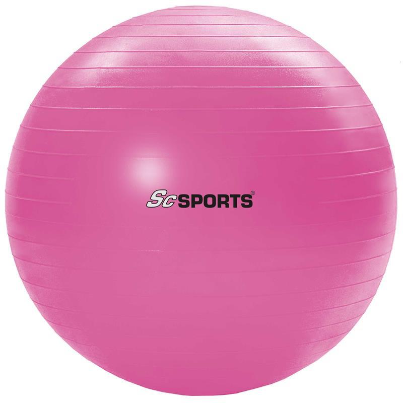 Gymnastikball inkl. Pumpe65 cm pink