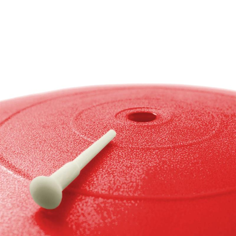 Gymnastikball inkl. Pumpe65 cm rot